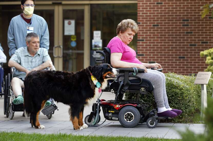 Residential therapy dog makes Mercy's Hallmar residents feel at home