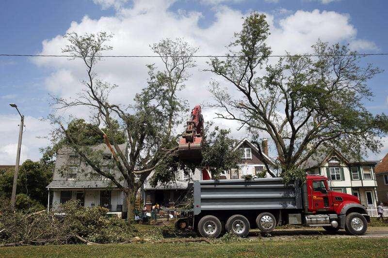 Here's how to get rid of your derecho tree debris
