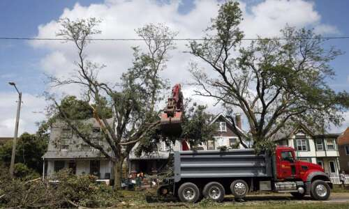 Here's how to get rid of your derecho tree debris
