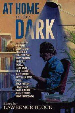 REVIEW | 'AT HOME IN THE DARK'