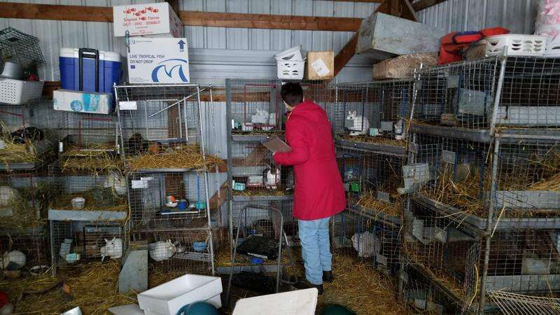 Update: Judge returns only a few animals to Vinton family after hundreds were seized in January