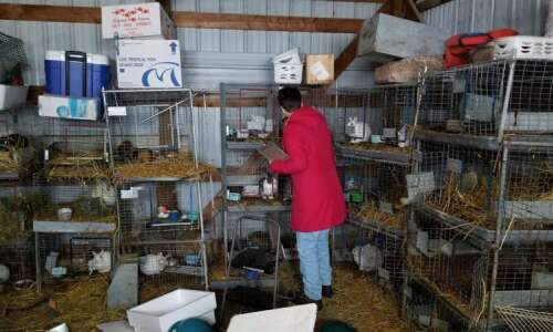 Update: Judge returns only a few animals to Vinton family…