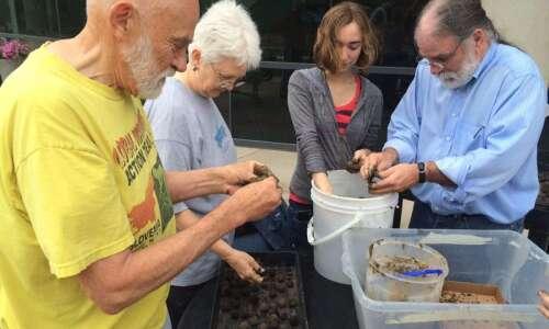 RAGBRAI riders could help restore Iowa butterfly population