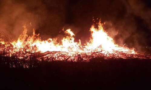 Large tree debris pile burning at Tait Cummins Park