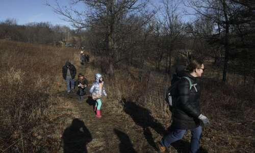 Unusually warm weather greets hikers on New Year's Day trek…