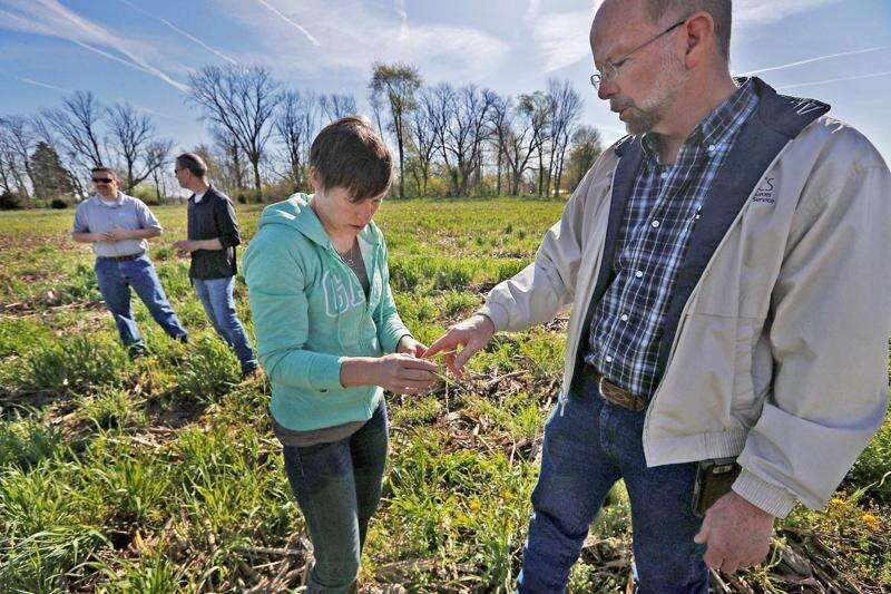 For Iowa farmers, profiting from cover crops may unlock potential