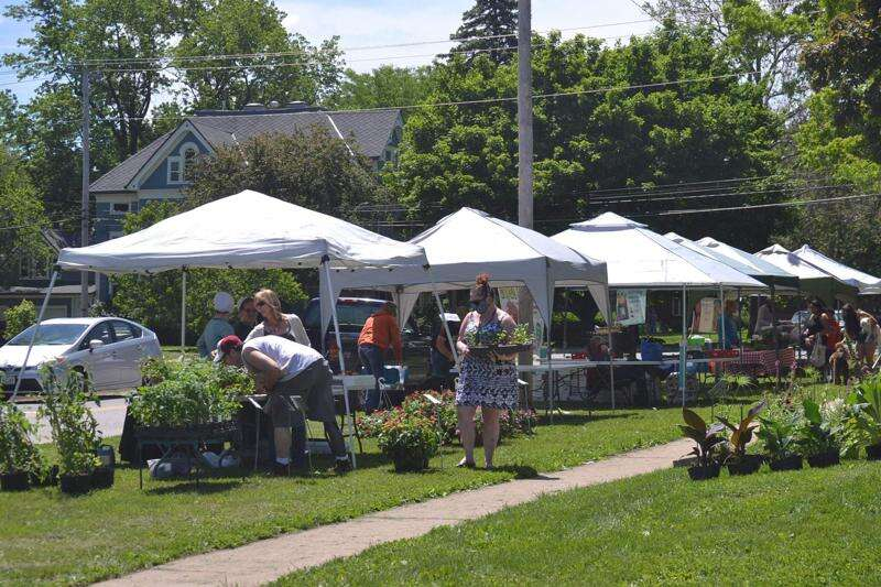 Fairfield Farmers Market to host live music, educational programs in August