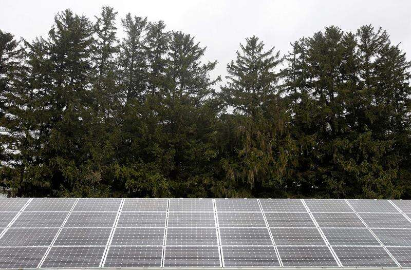Utility-scale solar energy can be a tool for conservation, economic development
