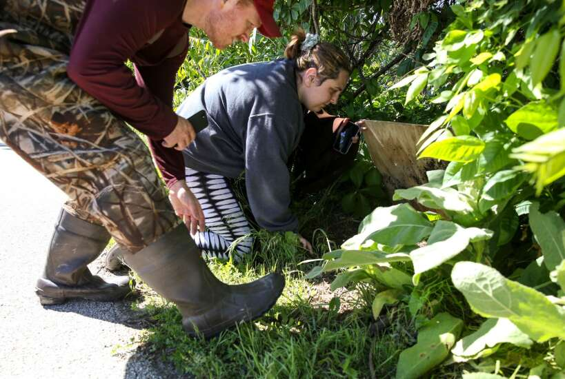 Coe College team spearheads Cedar Rapids community-based project to study Cedar Lake biodiversity