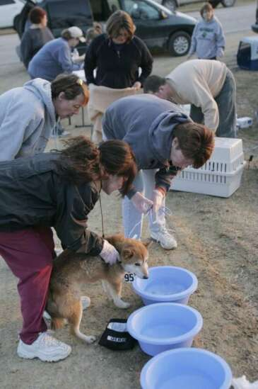 PHOTOS: Investigators search dog breeding kennel for signs of neglect