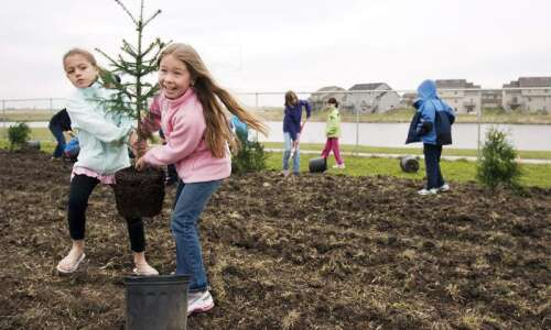 Trees Forever hosting tree adoption for Cedar Rapids residents
