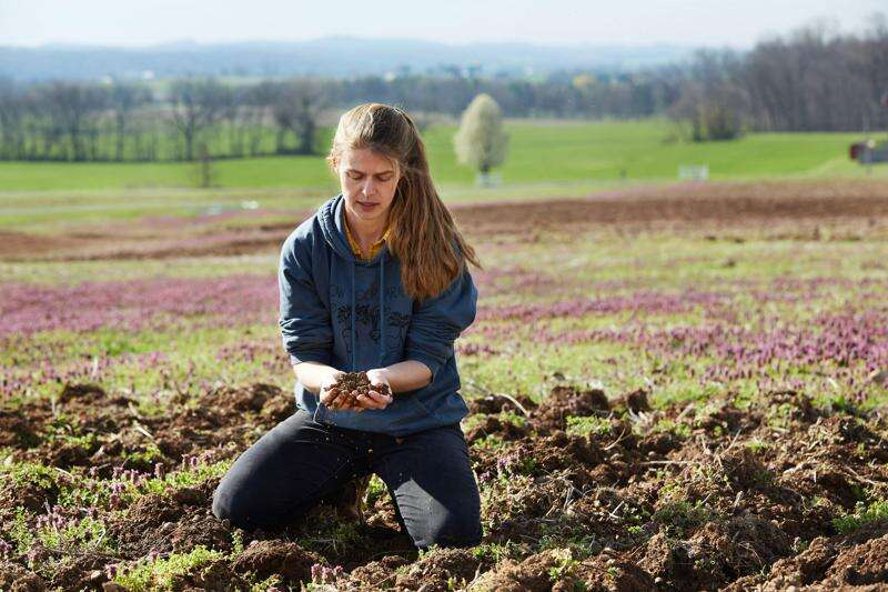 More small farmers pivot to sell directly to consumers