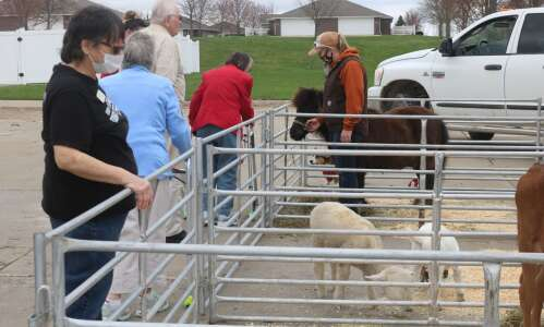 Sunnybrook celebrates farm animal day