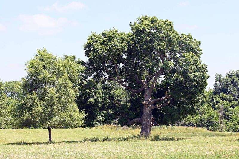 History-rich lands to be preserved in Indian Creek Nature Center donation