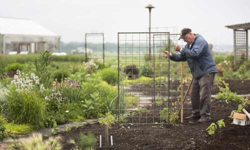 FROM THE GROUND UP | LINN COUNTY MASTER GARDENERS