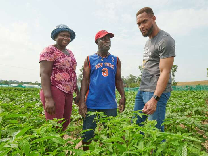 Linn County program connects aspiring farmers with patch of fertile land on Dows Farm property