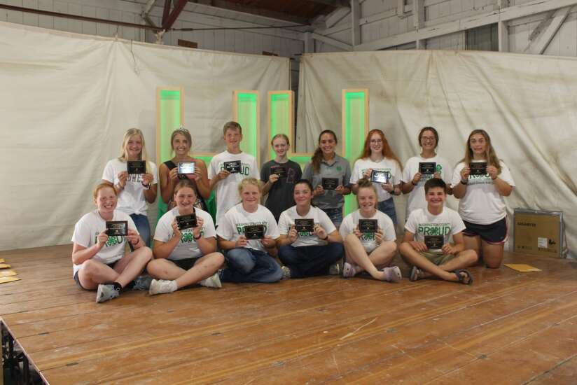 Washington County Fair projects honored