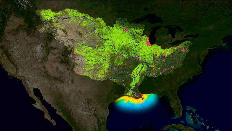 Mississippi River water quality gets a D
