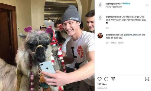 University of Iowa fraternities investigated for hazing, hosting a llama…