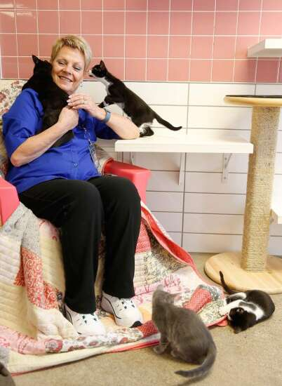 Cedar Rapids Animal Care & Control director reflects on two floods