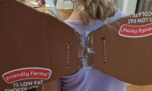 Make your own fairy wings