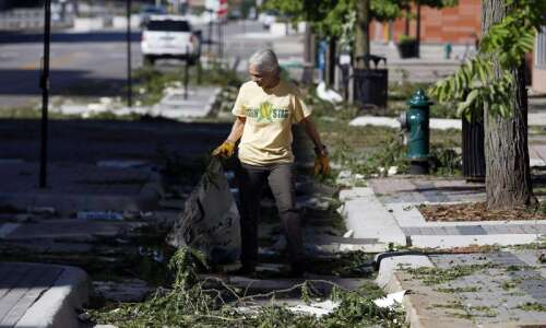 Here's what to do with tree debris in Cedar Rapids,…