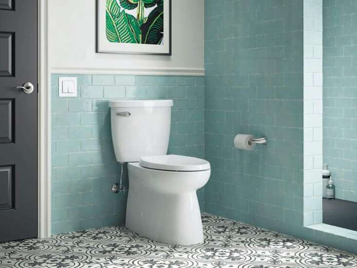 Looking to install a skirted toilet
