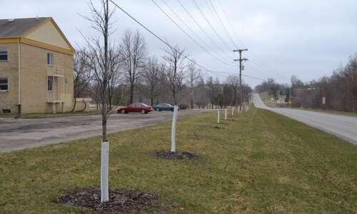 Fairfield, Washington receive tree-planting grant