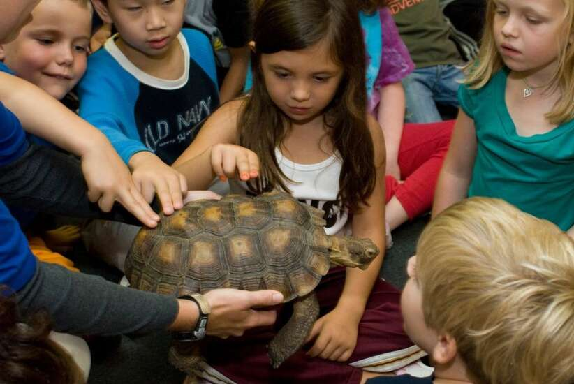 Blank Park Zoo animal ambassadors to visit Fairfield Wednesday