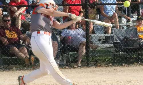 Area cleans up on All-State softball team