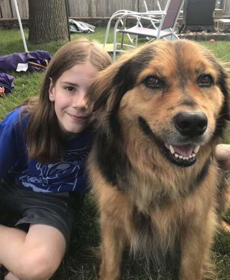 I've pet that dog! Cedar Falls boy builds an online following telling stories of the dogs he's petted