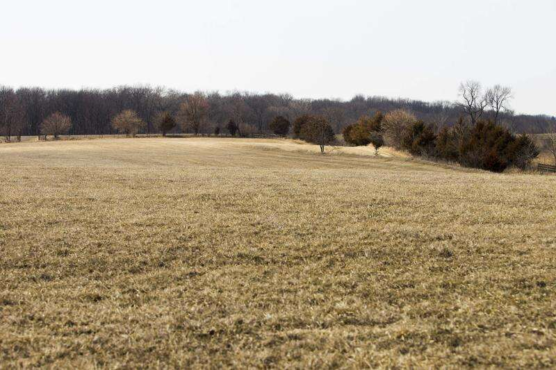 Farm bankruptcies up nearly 20 percent in 2019