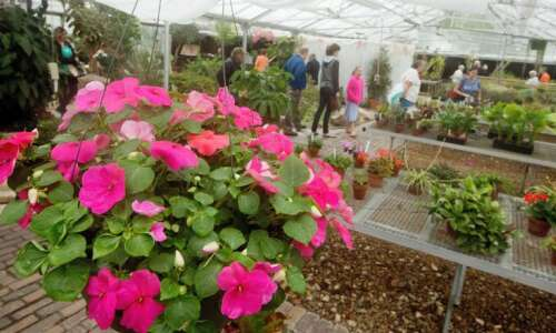 Garden sales and compost pickup adapt for social distancing