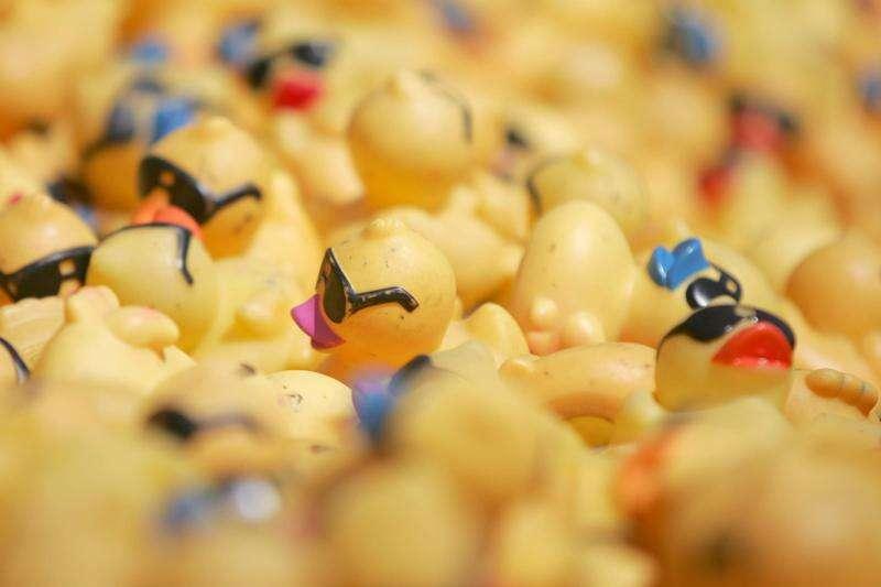 Quack, quack: Great Eastern Iowa Duck Race is Saturday in Cedar Rapids