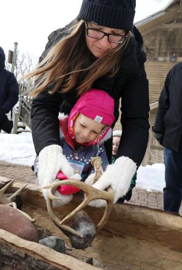Sap is pouring for Indian Creek Nature Center's Maple Syrup Festival and programs