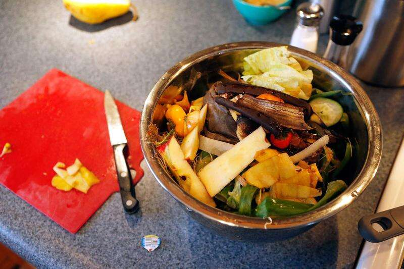 Iowa City food waste study diverts 1,000 pounds from landfill