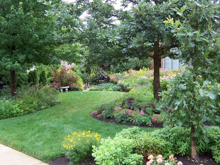 The Iowa Gardener: Choosing the right power edger for manicured landscaping