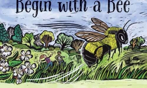 Eastern Iowa author, illustrator create buzz with new bee book