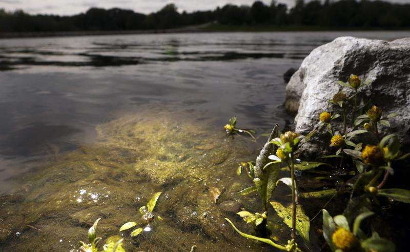 Tone down for what? Water quality issue won't go away, governor