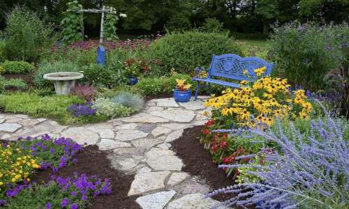 Give your garden a late summer refresh