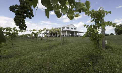 Walker Homestead is more than a farm; it offers pizzas,…