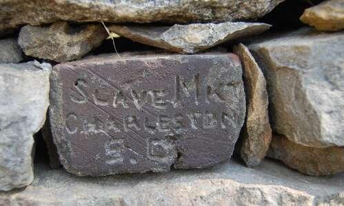 Stone collection becomes backyard wall