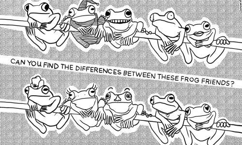 Can you spot the differences?