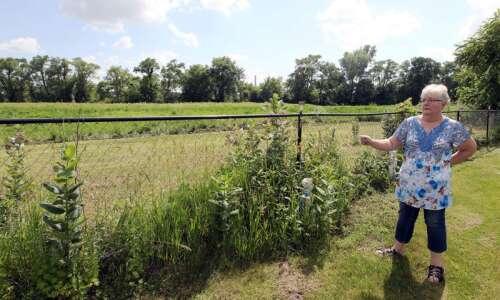 Cedar Rapids' puzzling decision to nix a prairie pollinator zone