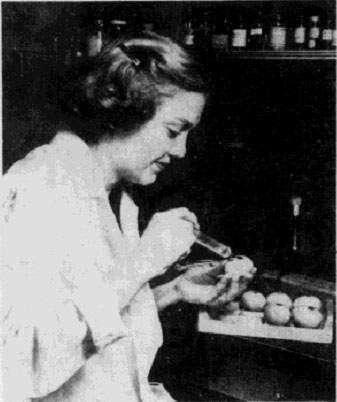 Time Machine: The elusive 1918 flu virus