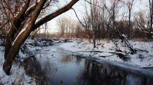 Hazardous waste from defunct plant may have polluted creek for years