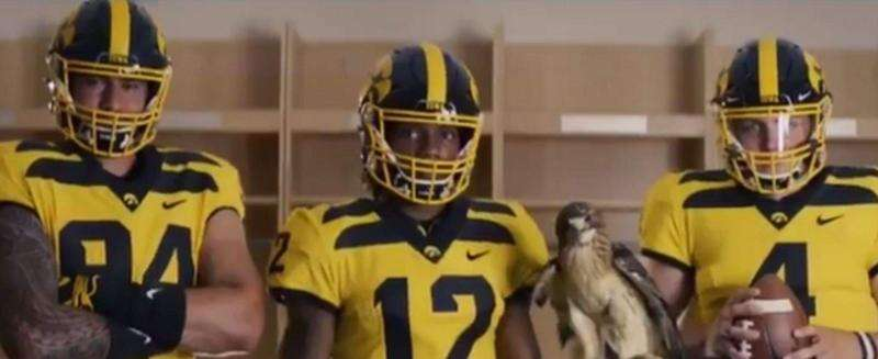 Iowa football brings back the wings with new gold alternate uniform