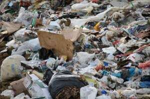 Iowa City moving ahead with trash-to-biofuel research