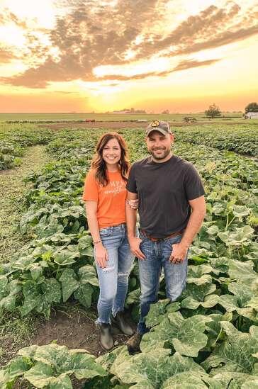 Pumpkin patch opens in Washington County