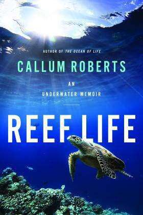 Reef Life: An Underwater Memoir review: dazzling beauty and serious science
